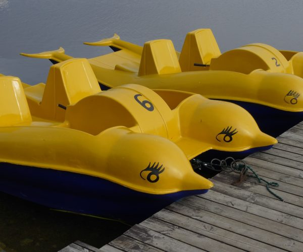 La Rague Watersport - Pédalo - Mandelieu la Napoule